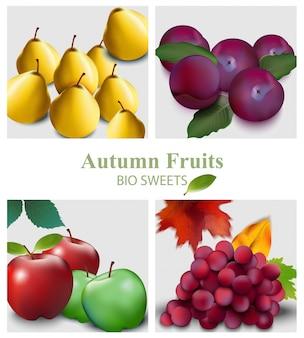 Set di frutti realistico. pera, mela, uva e prugne