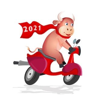 Toro divertente cavalca uno scooter rosso su sfondo bianco. simbolo cinese del nuovo anno 2021 dei tori di colore