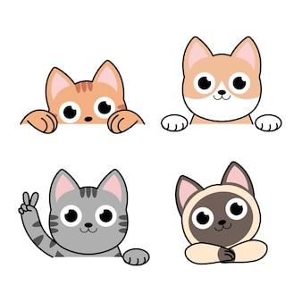 Gatti divertenti dei cartoni animati, diversi set di bordi anteriori, pose.