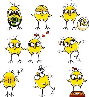 Polli divertenti raggruppati individualmente per un facile copia e incolla.