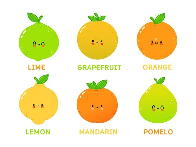 Set di divertenti simpatici personaggi di agrumi felici