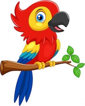 Divertente cartone animato pappagallo rosso