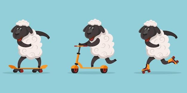 Pecore sportive divertenti. animali a cavallo su skateboard, pattini a rotelle e scooter.
