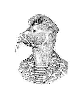 Guarnizione di pelliccia uomo in uniformi militari mammifero marino moda animale personaggio disegnato a mano schizzo inciso