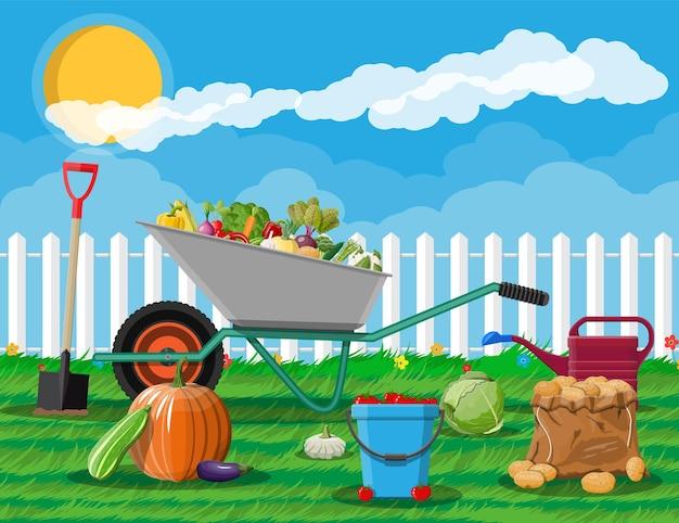 Raccolta del giardino con verdure e diverse attrezzature da giardinaggio, strumenti.