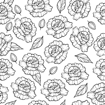 Modello di fiore di peonia da giardino. illustrazione del profilo