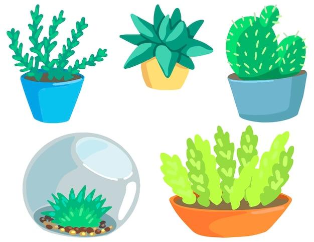 Giardinaggio, cactus, piante d'appartamento, piante grasse. raccolta di illustrazioni vettoriali disegnate a mano. clipart di cartoni animati colorati isolati su sfondo bianco. elementi per il design, la stampa, l'arredamento, la cartolina, gli adesivi.