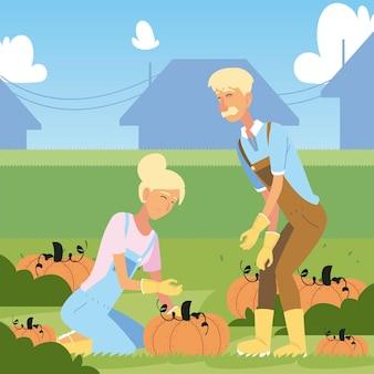 Giardinaggio, coppia di agricoltori con il raccolto di grandi zucche verdure fumetto illustrazione