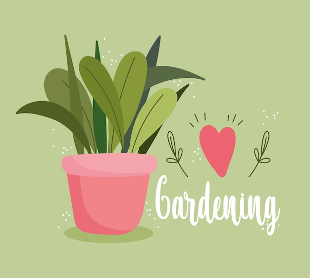 Giardinaggio, pianta in vaso cuore amore decorazione carta