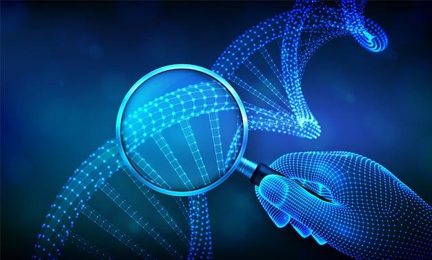 Concetto di ingegneria genetica con lente d'ingrandimento in mano e sequenza di dna. maglia metallica della struttura delle molecole di codice del dna di wireframe.
