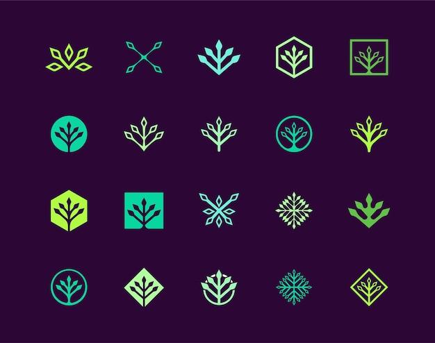 Design del logo della pianta della geometria, set di semplici modelli astratti per il logo