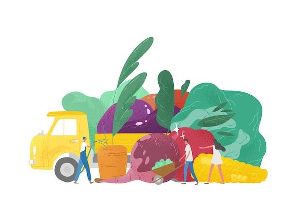 Frutta e verdura giganti, camion e gruppo di persone minuscole, lavoratori agricoli o agricoltori isolati su superficie bianca