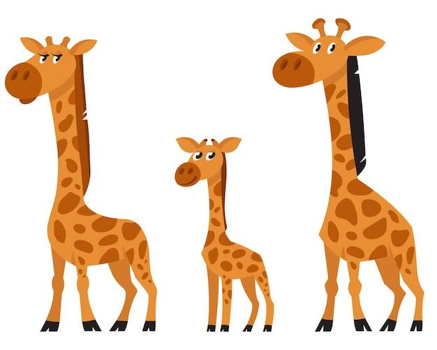 Personaggi della famiglia giraffa. animali africani in stile cartone animato.