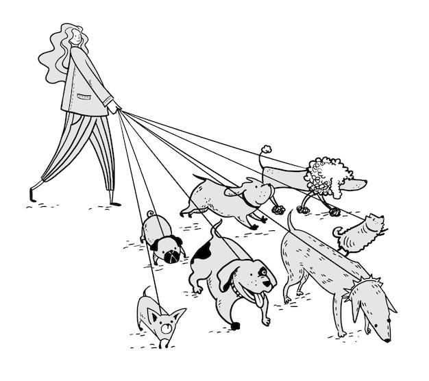 Ragazza che cammina con un gruppo di cani illustrazione vettoriale