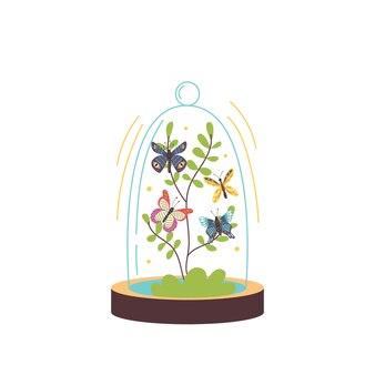 Farfalle di terrario di vetro