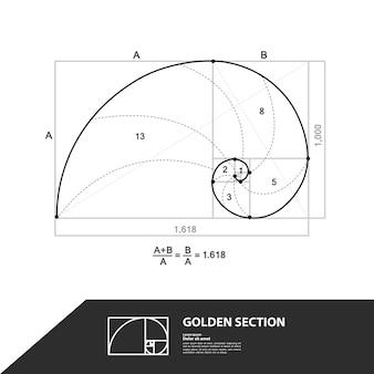 Sezione aurea per un design creativo.