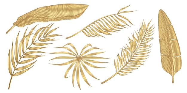 Foglie tropicali dorate su fondo bianco.