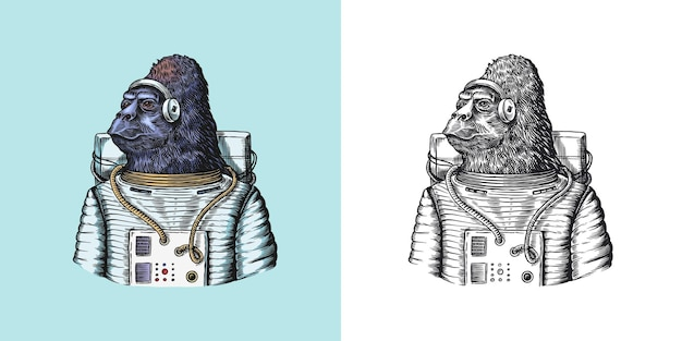 Gorilla astronauta personaggio scimmia astronauta cosmonauta animale alla moda gentiluomo vittoriano in a