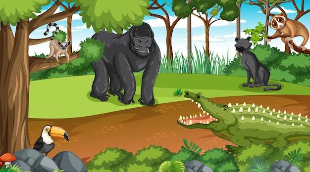 Gorilla con altri animali selvatici nella foresta o nella foresta pluviale