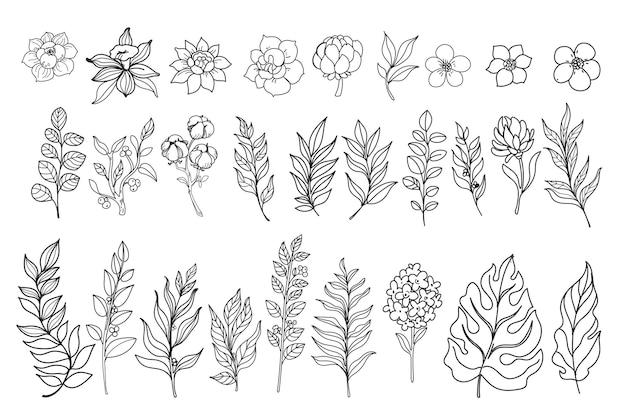 Insieme di elementi grafici di disegno di stile dell'inchiostro di fiori e foglie