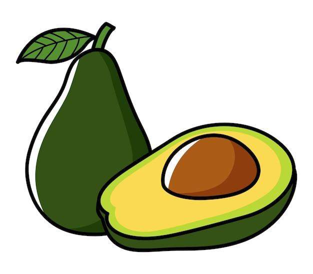 Illustrazione grafica di avocado