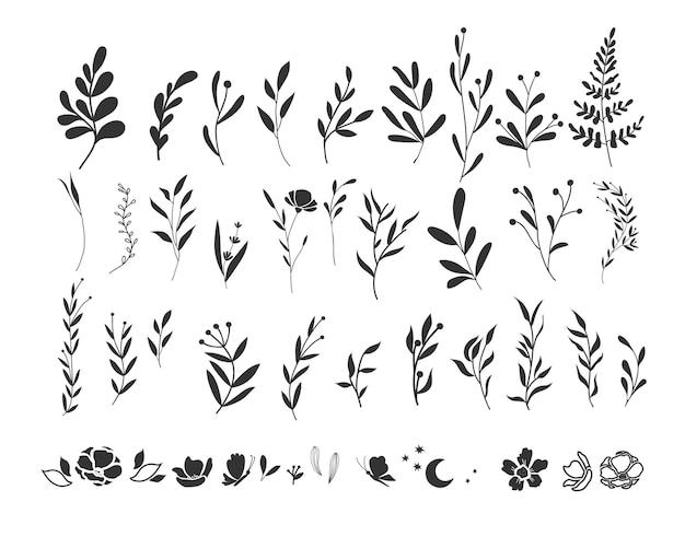 Set grafico di ramoscelli e rametti. piante silhouette disegnate a mano