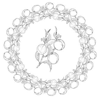 Ghirlanda grafica con illustrazione di frutta pesca