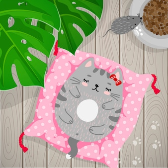 Gattino grigio che dorme sul cuscino a casa.