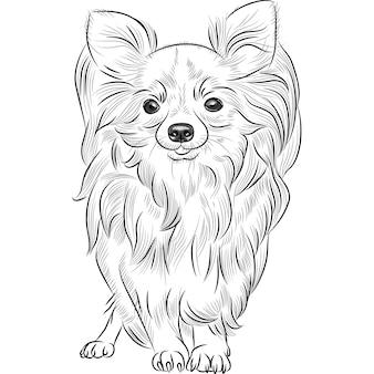 Schizzo in scala di grigi del simpatico cane di razza chihuahua sorridente