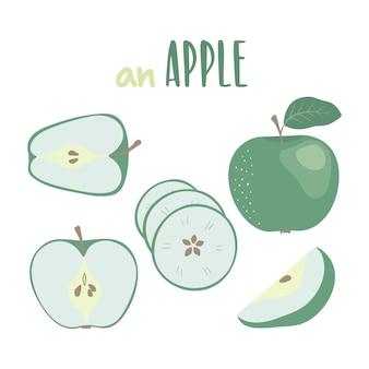 Insieme disegnato a mano dell'illustrazione della mela verde.