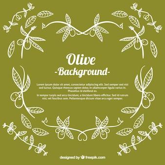 Sfondo verde di olive disegnati a mano