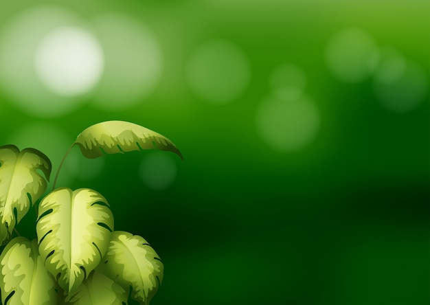 Una cancelleria di colore verde con foglie