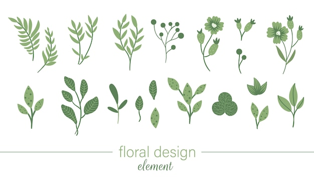 Set di clip art floreali verdi. illustrazione alla moda con fiori, foglie, rami, bacche.