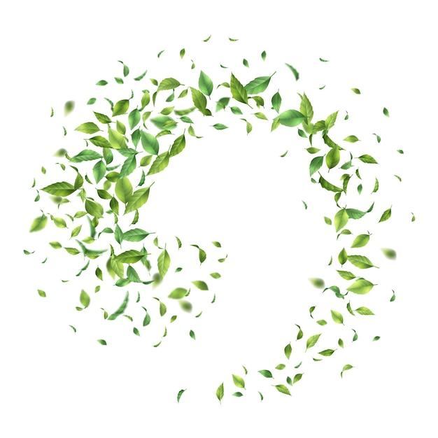 Foglie verdi che volano o cadono