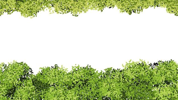 Modello di fogliame verde. foglie di albero isolate, modello di banner primavera estate. struttura di vettore senza giunte di fioritura cespugli. illustrazione bordo fogliame e motivo foglia a strisce