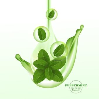 Foglia di menta piperita verde e fresca