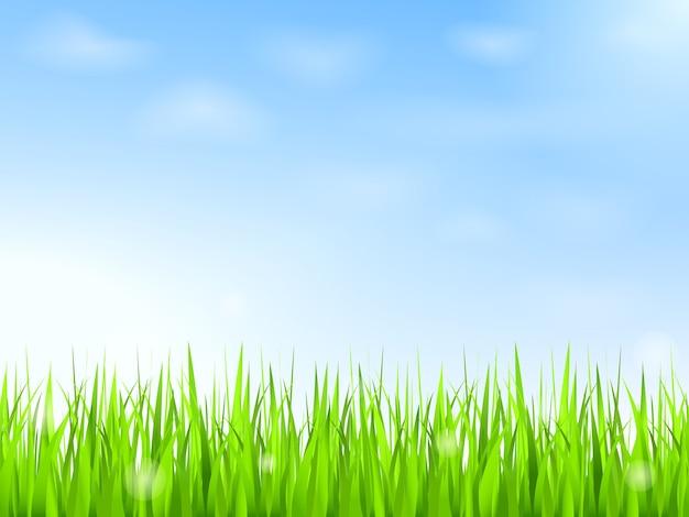 Erba verde e cielo azzurro con nuvole Vettore Premium