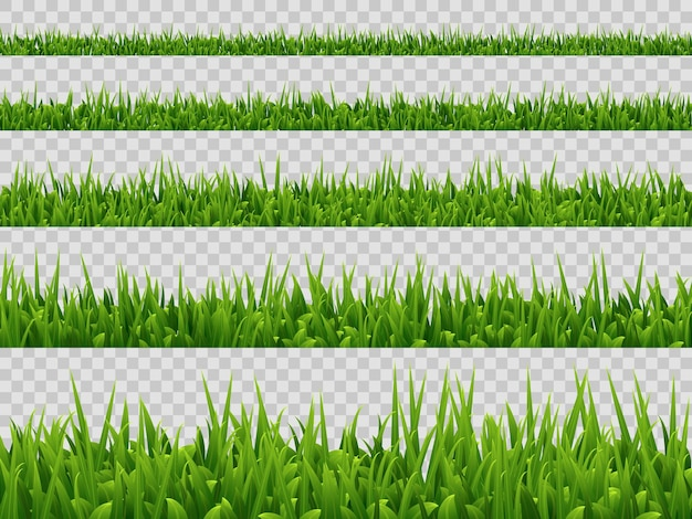 Raccolta del confine di erba verde isolata. stile realistico.