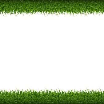 Bordo di erba verde isolato, illustrazione