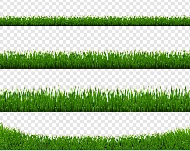 Bordo di erba verde isolato su sfondo trasparente