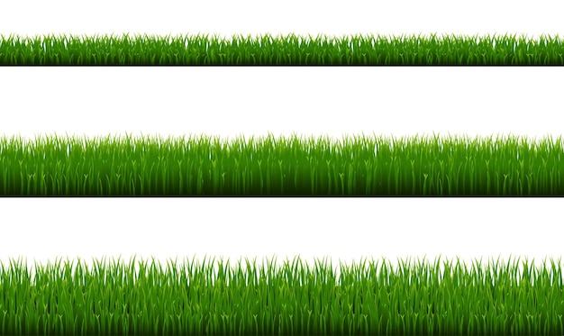 Bordo dell'erba verde isolato