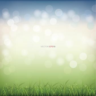 Campo di erba verde con luce sfocata sullo sfondo del bokeh
