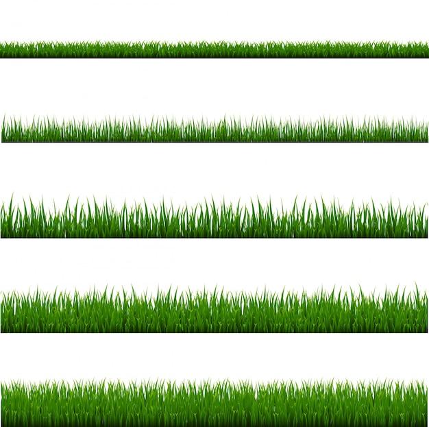 Set di frame di erba verde e sfondo bianco isolato