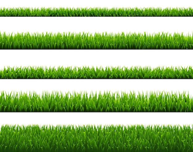 Set di erba verde isolato su sfondo bianco