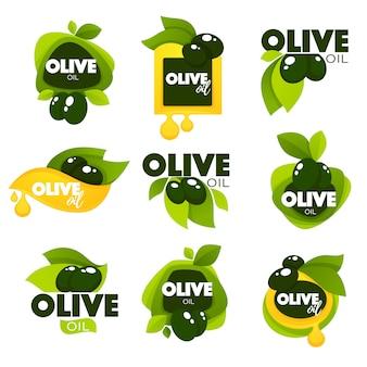 Foglie di olivo verde