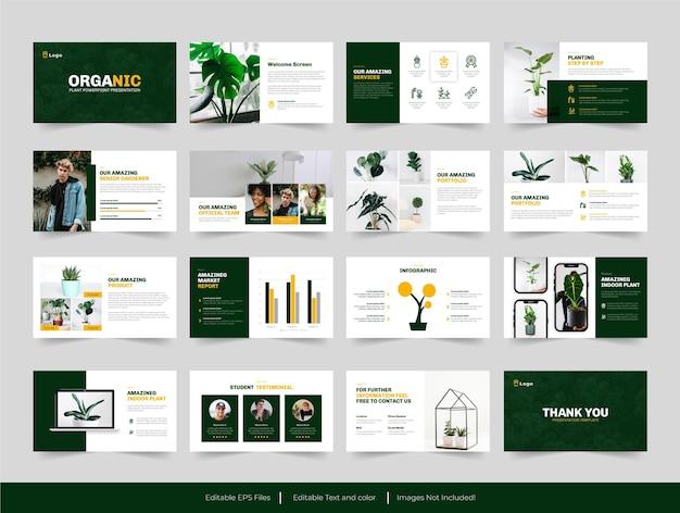 Modello di presentazione per interni di piante verdi