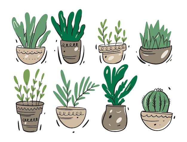 Piante verdi in vasi domestici. stile cartone animato.
