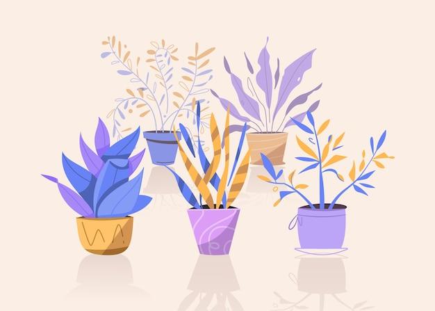 Le piante verdi in vaso mettono oggetti isolati. alberi da vaso, vasi da fiori sospesi per interni