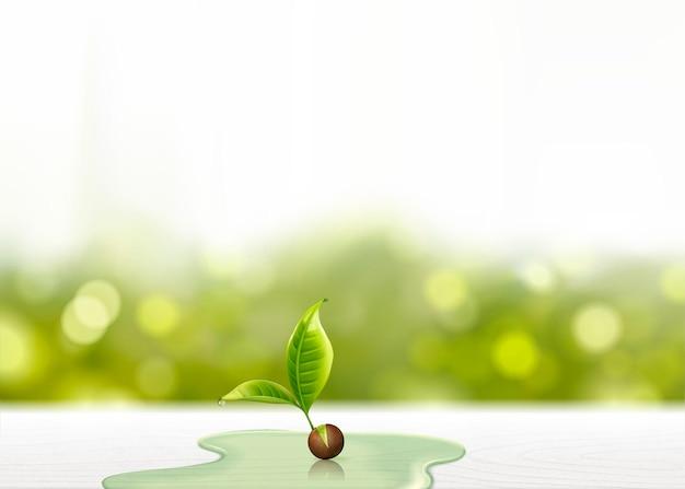 Germoglio verde con acque sul tavolo di legno bianco, sfondo bokeh glitterato