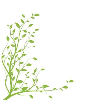 Ramo di albero verde. siluetta del ramo isolata su priorità bassa bianca con molte foglie. illustrazione vettoriale